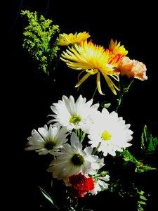 Bryan no 38 bouquet 2_n