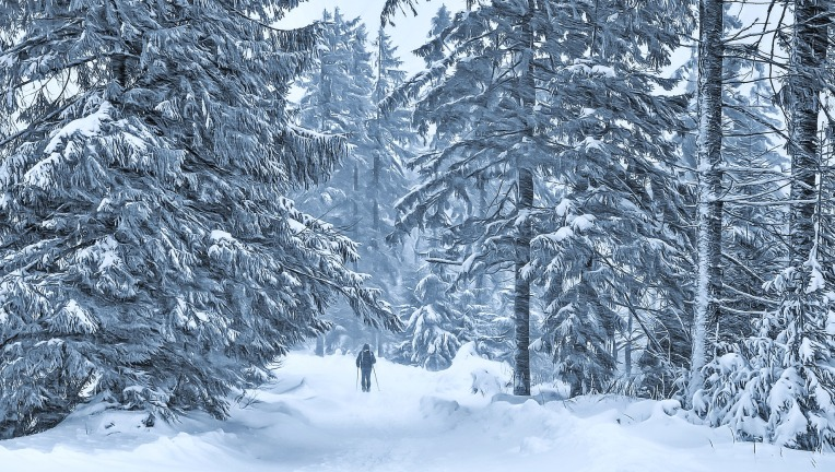winter-4399912_1920