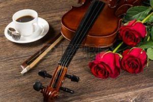 violon et rose